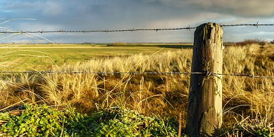 Agricultural Fencing Types