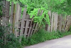 bigstock-Old-Wooden-Fence-53868370.jpg